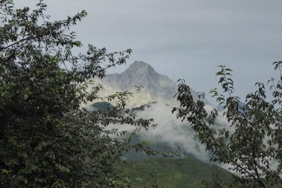 Dharamsala_Berge