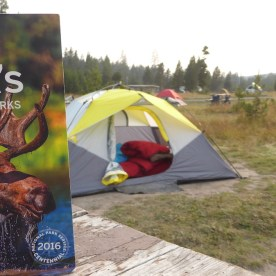 USA-Yellowstone-Nationalpark-Zelten-LonelyPlanet