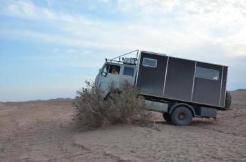 Unsinn in der Wüste