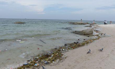Umweltsünden und die Folgen