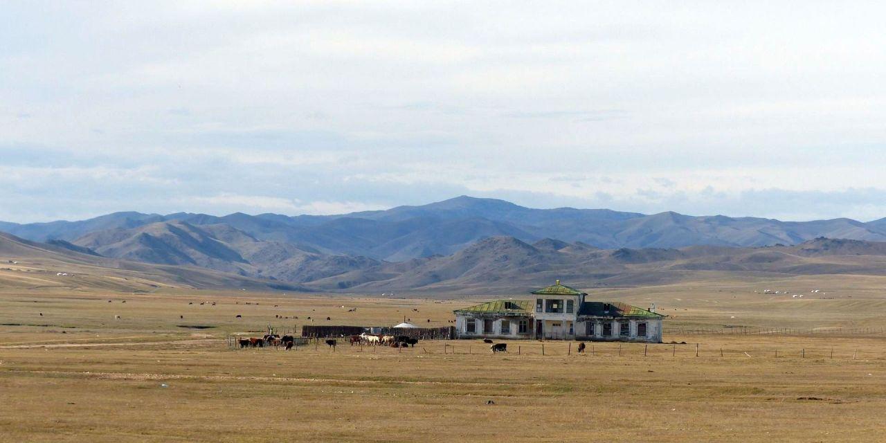 Budget Mongolei Weltreise