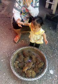 weltreise-laos-luang-prabang-0707