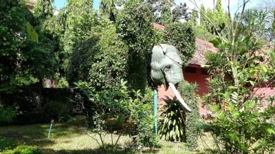 weltreise kambodscha phnom penh -0085