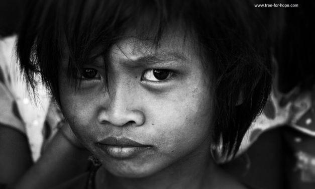 6 Wochen Mitarbeit in Hilfsorganisationen – Thomas House und Tree for hope