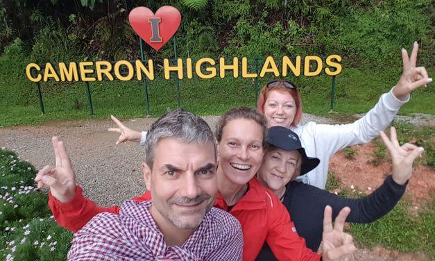 Video aus Malaysia – Cameron Highlands
