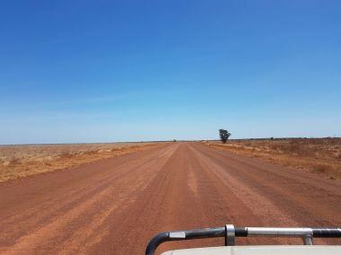 weltreise nocker australien - GIBB_484
