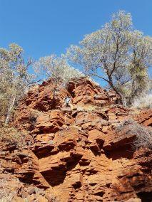 weltreise nocker australien - Karrijini National Park_257