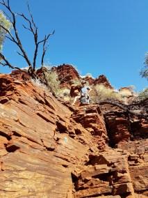 weltreise nocker australien - Karrijini National Park_26