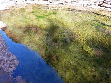 weltreise nocker australien - Karrijini National Park_657