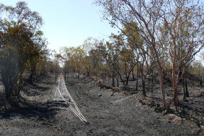 weltreise nocker australien - nitmiluk national park, katherine_96