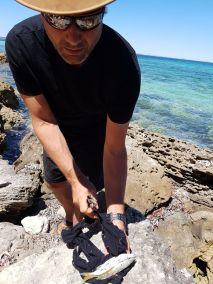 weltreise nocker australien - shark bay_212