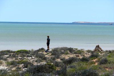 weltreise nocker australien - shark bay_246