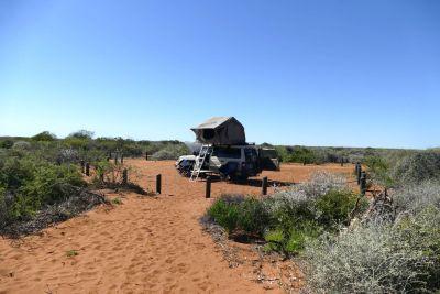 weltreise nocker australien - shark bay_258