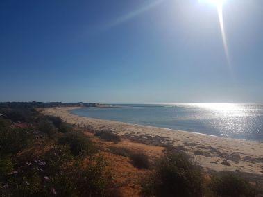 weltreise nocker australien - shark bay_84