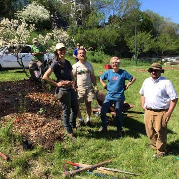 NEWS on Harbor View Park & the Edible Hillside