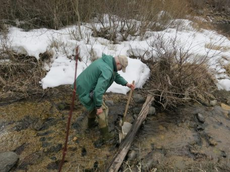 Smaller Stormy Creeks joins the Entiat River on the Stormy Preserve. Its compacted & even-sized bottom sediments lack crevices and spaces so few invertebrates inhabitat its substrate.