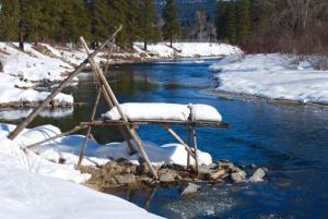 Yakama and Colville Fishing Platforms on the Icicle River just downstream from the Leavenworth Nat. Fish Hatchery