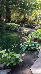 Ohme Gardens photo by Jaana Hatton