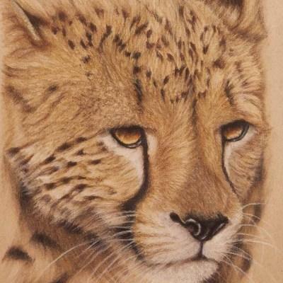 Cheetah Pastel     more info