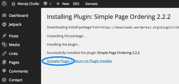 Figure 6: The plugin activation screen