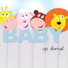 Zwangerschapskaart (2)