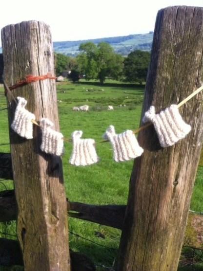Sheep Bunting