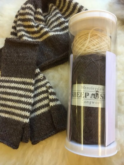Striped Beanie Hat and Gloves Kit 2