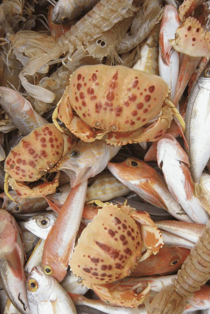 crab, shrimp and fish