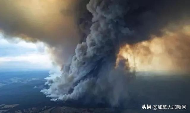 大火致澳洲成人间炼狱,烧毁面积等同22个温哥华(图)