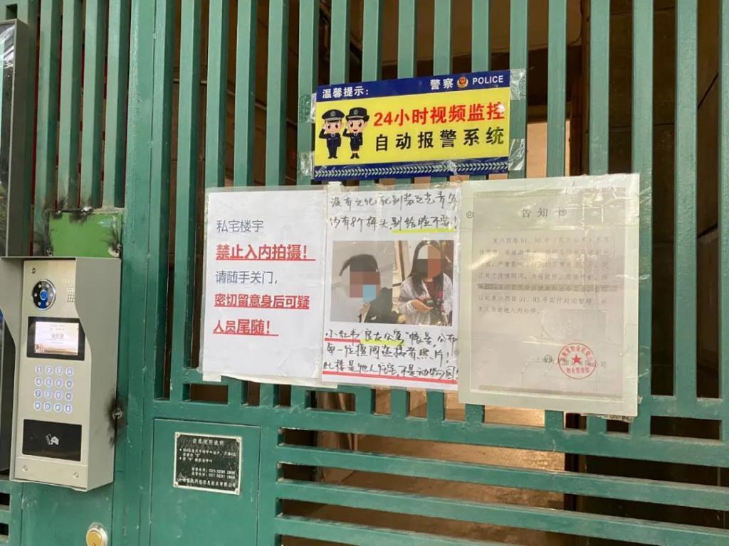 """我住上海网红洋房公寓,天天和""""入侵者""""斗智斗勇"""
