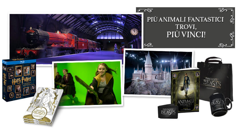 Risultati immagini per dvd e gadget harry potter