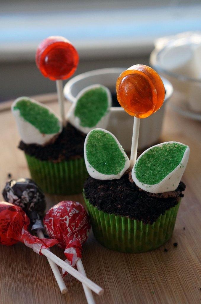 lollipop-flower