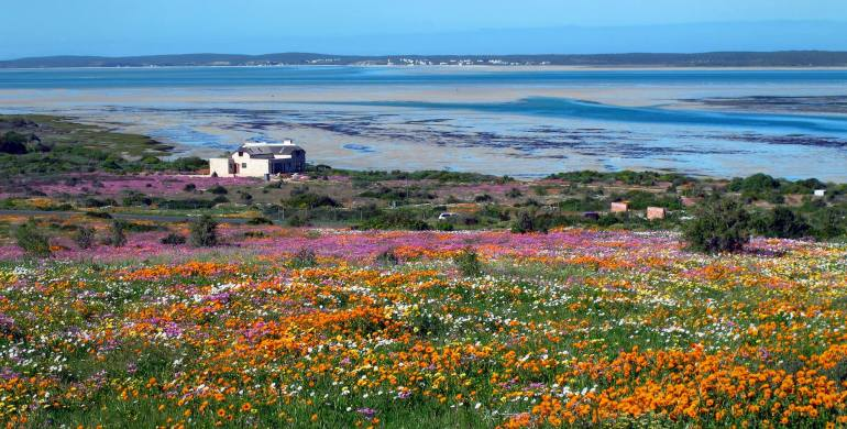 West Coast National Park, Zuid-Afrika