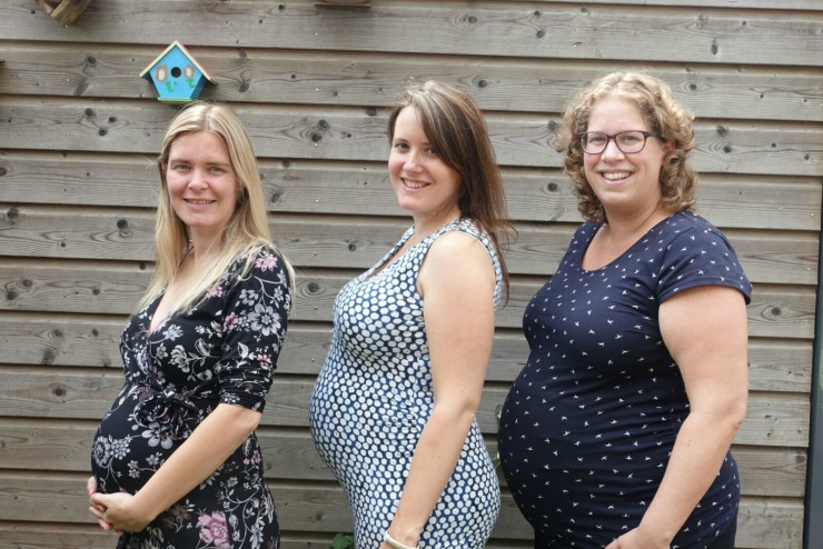 zwangere-bloggers