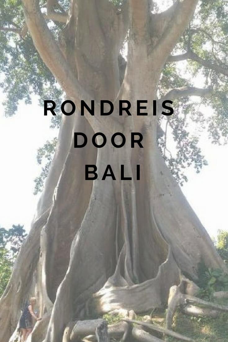 Rondreis door Bali