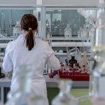"""Cancro e malattie infettive, l'appello dell'Istituto Pasteur Italia: """"Adotta un ricercatore"""""""