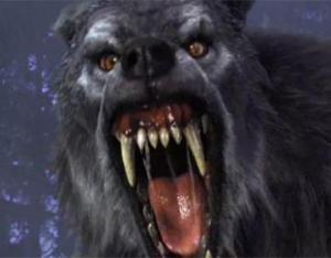 Van_helsing_werewolf-361x282