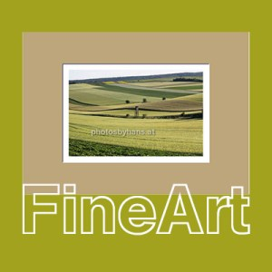 FineArt Prints