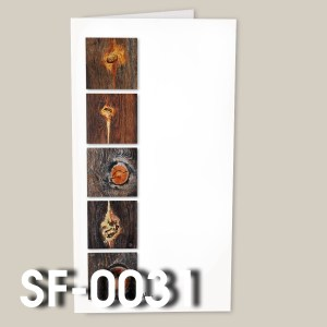 SF-0031