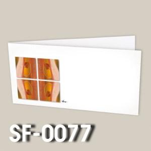 SF-0077