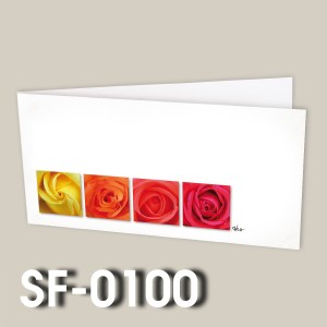 SF-0100
