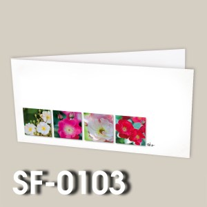 SF-0103