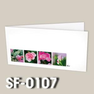 SF-0107