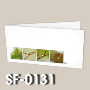 SF-0131