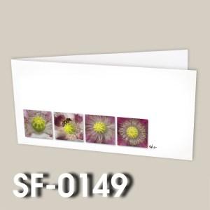 SF-0149