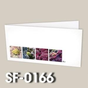 SF-0166