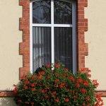 Blumen Fenster