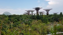Singapur Garden by the Bay
