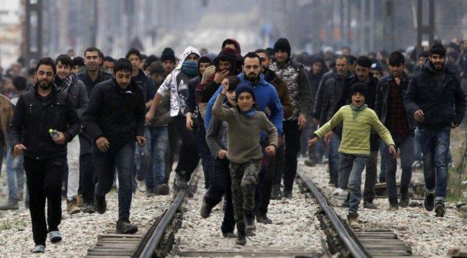 Werden Sie Migrant…