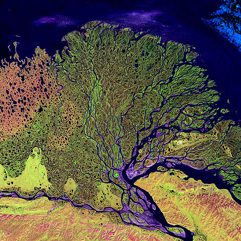"""Lena River Delta - Landsat 2000"" by none (Landsat) - Το δέλτα του ποταμού Λένα της Ρωσίας όπως το απεικόνισε ο δορυφόρος Landsat το 2000. Licensed under Public domain via Wikimedia Commons - http://commons.wikimedia.org/wiki/File:Lena_River_Delta_-_Landsat_2000.jpg#mediaviewer/File:Lena_River_Delta_-_Landsat_2000.jpg"
